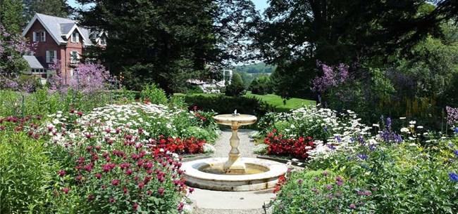 Garden-in-summer-Aug-2015-Shahi-cropped_1