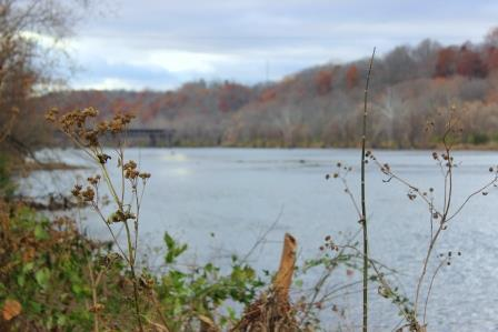 Shawsville New River Valley